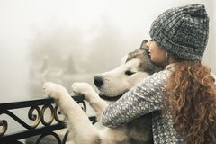 Image of young girl with her dog, alaskan malamute, outdoor stock images
