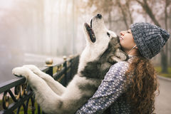 Image of young girl with her dog, alaskan malamute, outdoor. At autumn or winter. Domestic pet. Husky Royalty Free Stock Image