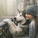 Image of young girl with her dog, alaskan malamute, outdoor. At autumn or winter. Domestic pet. Husky Stock Images