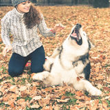 Image of young girl playing with her dog, alaskan malamute Stock Photography
