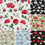 Seamless floral patterns. Roses, Peonies and Lilium. Image for your design projects Royalty Free Stock Photo