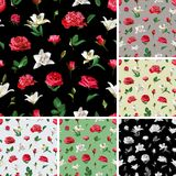 Seamless floral patterns. Roses, Peonies and Lilium. Image for your design projects Stock Photos