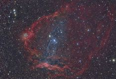 SH2-129 Flying Bat Nebula and OU4 Squid Nebula. Imaged with a telescope and a scientific CCD camera stock illustration