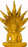 Imagee av Buddha sitter och konungen av det Nagas huvudet Arkivbilder