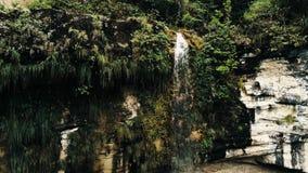 Imagem aérea cinemático do zangão da cachoeira e de uma associação pequena profundamente na selva da floresta úmida no parque nac fotos de stock royalty free