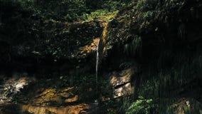 Imagem aérea cinemático do zangão da cachoeira e de uma associação pequena profundamente na selva da floresta úmida no parque nac imagens de stock