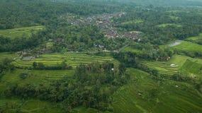 Imagem aérea de uma cidade cercada pelas palmas e pelo terraço do arroz fotografia de stock