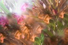 Imagem abstrata das flores no parque ilustração do vetor