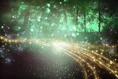 Imagem abstrata e mágica do voo do vaga-lume do brilho no conceito do conto de fadas da floresta da noite foto de stock