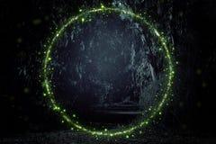 Imagem abstrata e mágica do voo do vaga-lume no conceito do conto de fadas da floresta da noite imagem de stock royalty free