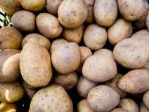 Imagem ascendente próxima de um grupo das batatas imagem de stock