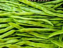 Imagem ascendente próxima de um grupo de feijões verdes no mercado horizontal fotos de stock royalty free