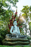 Imagem assentada de buddha protegida pelo naga Fotos de Stock Royalty Free