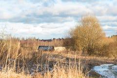 Imagem bonita do inverno landscape fotos de stock royalty free