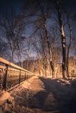Imagem bonita do inverno landscape Queda de neve no parque, parque de Mariinsky da floresta em Kyiv, Ucrânia imagens de stock