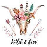 A imagem chique do boho da aquarela floresce, penas, elementos animais Imagens de Stock