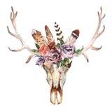 A imagem chique do boho da aquarela floresce, penas, elementos animais Imagem de Stock Royalty Free