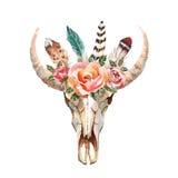 A imagem chique do boho da aquarela floresce, penas, elementos animais Foto de Stock