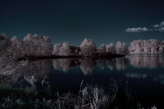 Imagem clássica de Infraredred de uma lagoa Fotografia de Stock Royalty Free