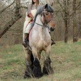 Imagem colhida da mulher corajoso na armadura em um cavalo Fotografia de Stock