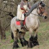 Imagem colhida da mulher corajoso na armadura em um cavalo Imagem de Stock Royalty Free
