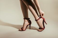 a imagem colhida da mulher que ajusta a elevação à moda colocou saltos sapatas imagem de stock