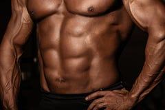 A imagem colhida do homem muscular bronzeou-se o torso do halterofilista Homem forte do atleta com Abs perfeito, ombros, bíceps,  imagem de stock