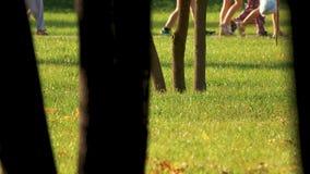 Imagem colhida dos povos que andam no parque do verão foto de stock royalty free