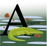 Imagem colorida do vetor com um jacaré ilustração royalty free