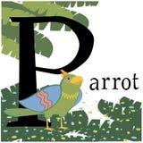 Imagem colorida do vetor com um papagaio ilustração stock