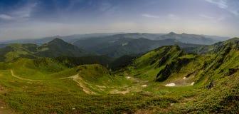 Imagem colorida inacreditável nas montanhas com rosa de florescência fotos de stock royalty free