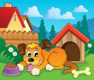 Imagem com tema 6 do cão Foto de Stock Royalty Free