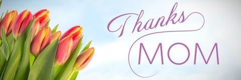 Imagem composta da mamã dos agradecimentos Fotografia de Stock
