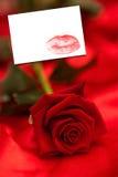Imagem composta da rosa do vermelho na seda vermelha Foto de Stock Royalty Free