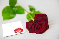 Imagem composta do fim do extremo acima nos bordos vermelhos lindos Fotografia de Stock