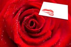 Imagem composta do zumbido da rosa do vermelho com gotas de orvalho Fotografia de Stock Royalty Free