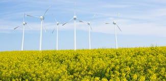 Imagem composta dos moinhos de vento de lado a lado contra o fundo branco 3d Foto de Stock Royalty Free