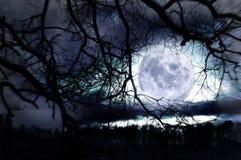 Imagem conceptual da lua. Foto de Stock Royalty Free