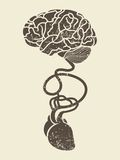 A imagem conceptual do cérebro e do coração conectou o toge Imagem de Stock Royalty Free