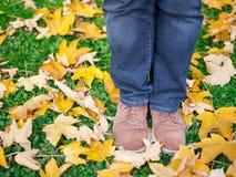 Imagem conceptual dos pés nas sapatas nas folhas de outono Pés das sapatas que andam na natureza foto de stock