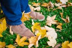 Imagem conceptual dos pés nas sapatas nas folhas de outono Pés das sapatas que andam na natureza fotografia de stock