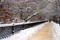 Imagem conservada em estoque de um inverno nevando em Boston, Massachusetts, EUA Imagem de Stock