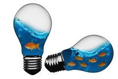 imagem 3D composta da ampola com peixe dourado para dentro Imagem de Stock Royalty Free