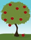 Imagem da árvore de Apple ilustração stock
