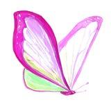 Imagem da aquarela de uma borboleta em um fundo branco Imagem de Stock