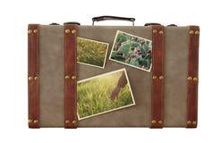A imagem da bagagem velha do vintage com fotos da natureza isplated no branco imagem de stock