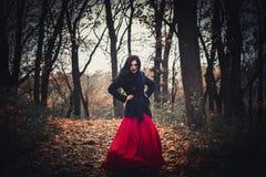 A imagem da bruxa bruxa celebration Bruxas da composição foto de stock