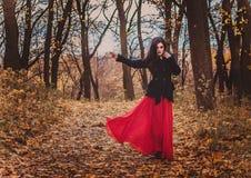 A imagem da bruxa bruxa celebration Bruxas da composição Fotos de Stock