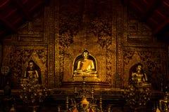 Imagem da Buda em Wat Phra Singh imagem de stock royalty free