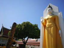 Imagem da Buda na posição de posição que mantém sua mão Este Budd foto de stock